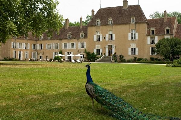 Chateau de Vault de Lugny酒店