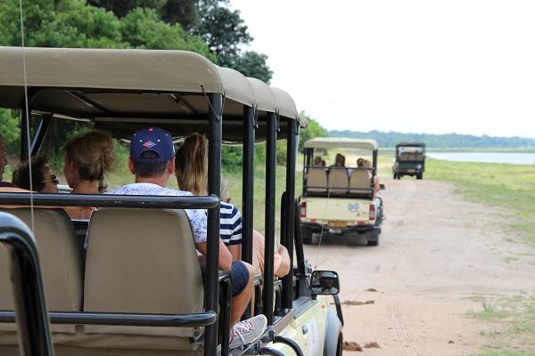 喬貝國家公園動物生態之旅