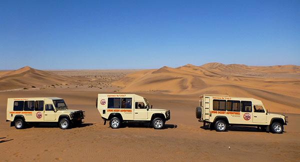 沙漠生態趣味之旅