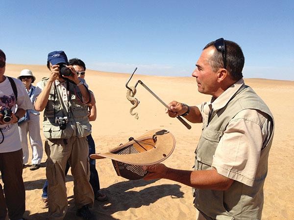 導遊介紹沙漠生態