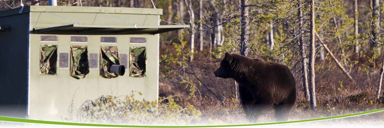 到达隐蔽屋后,随时准备守候野生棕熊或其他野生动物出没.